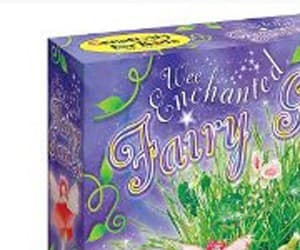 Wee Enchanted Fairy Garden Kit